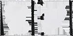 Aspenedities - Logo